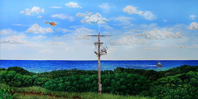 Reconectador Automático Serie OSM de NOJA Power instalado en Noosa, Queensland. Autor John H. Lynch (I)